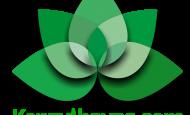 Kenzulhavas.com sitesi